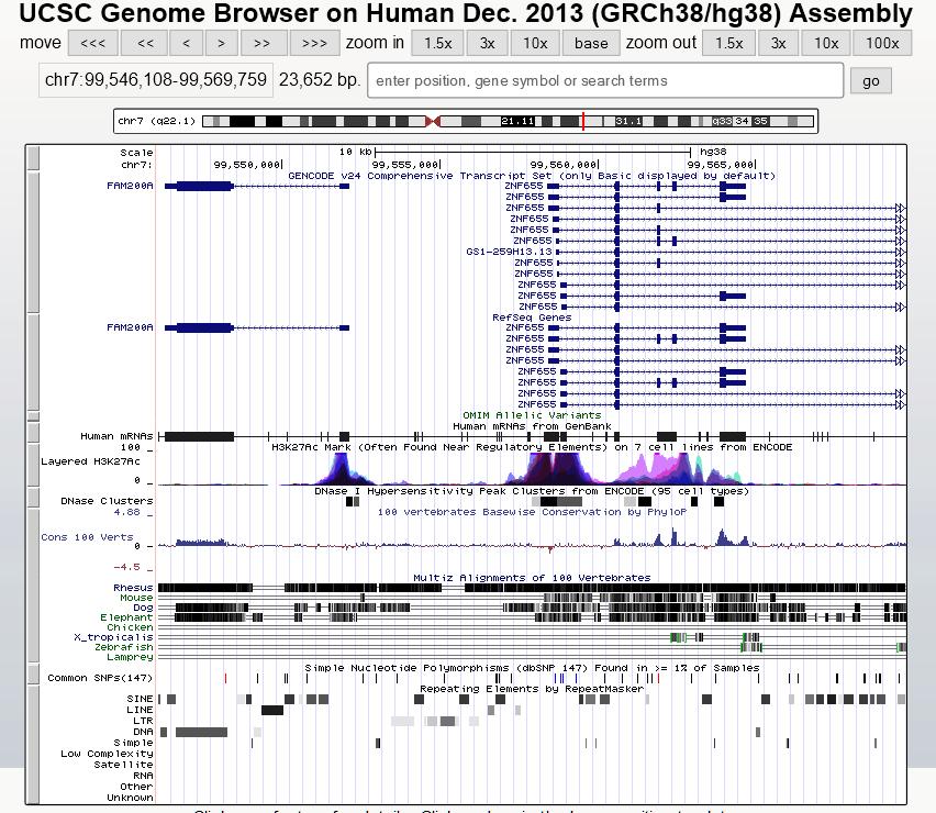 human-chr7-99546108-99569759-ucsc-genome-browser-v338-2016-09-23-11-22-14